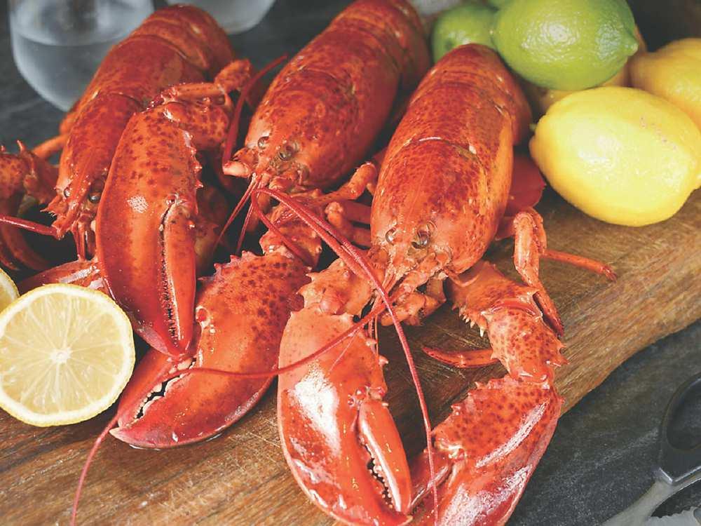 ↓〈雲軒〉西餐廳推出〈加拿大活龍蝦〉外賣,線上即可下單。圖/台北君品酒店